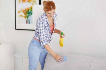 Почистить самостоятельно или... Профессиональная химчистка.